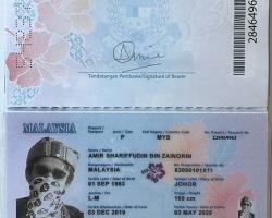 Passport Series #2